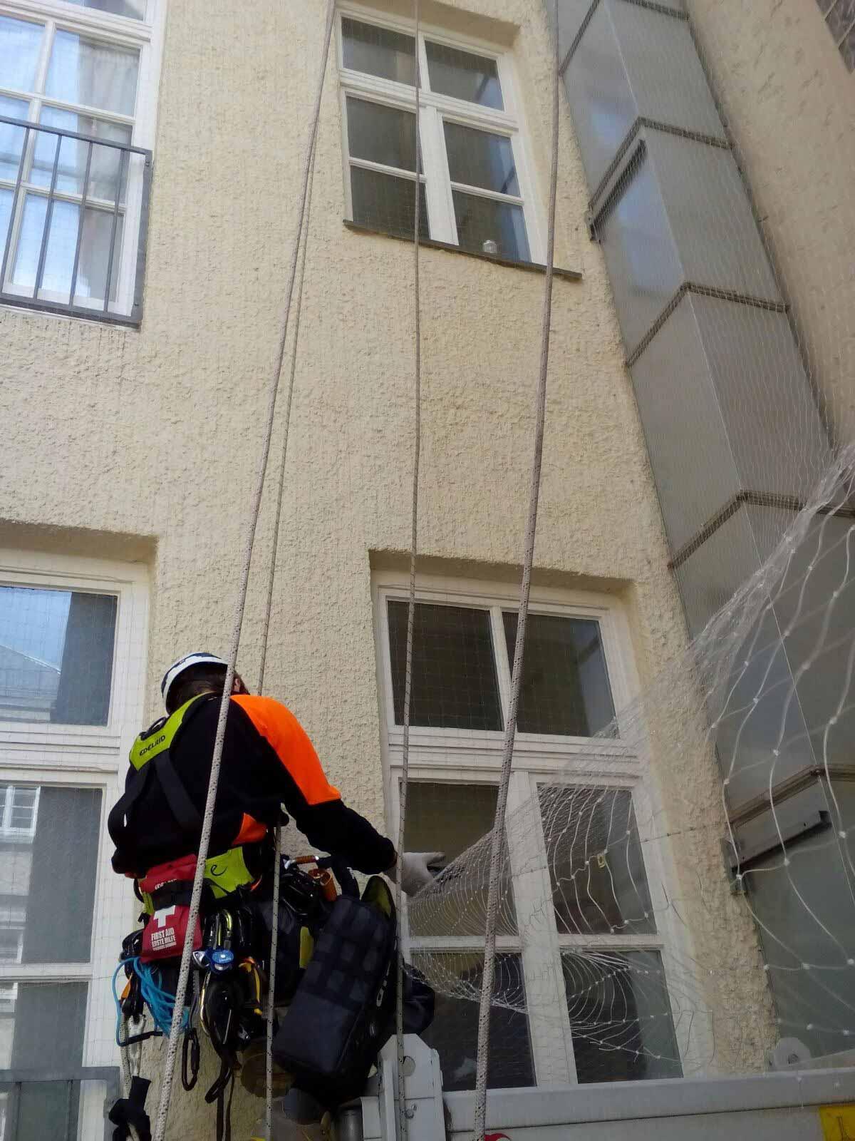 einbau taubennetz altstadt