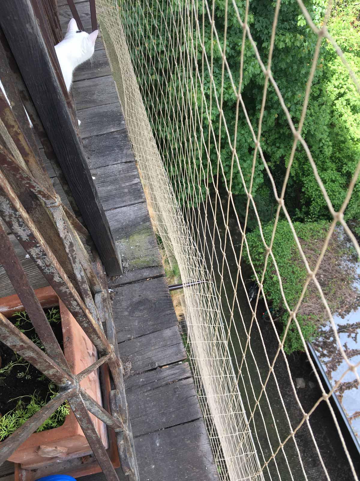 taubenabwehr vogelschutz balkon