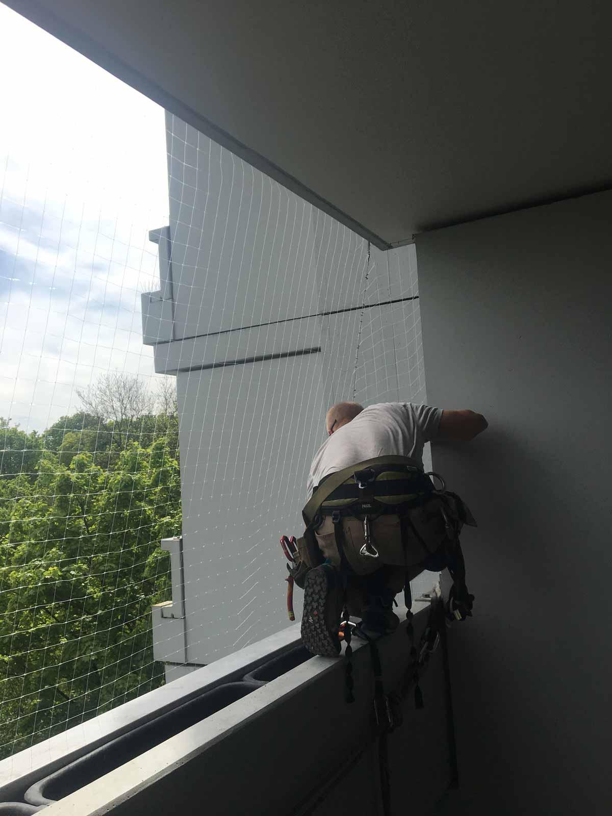 vogelschutz balkon