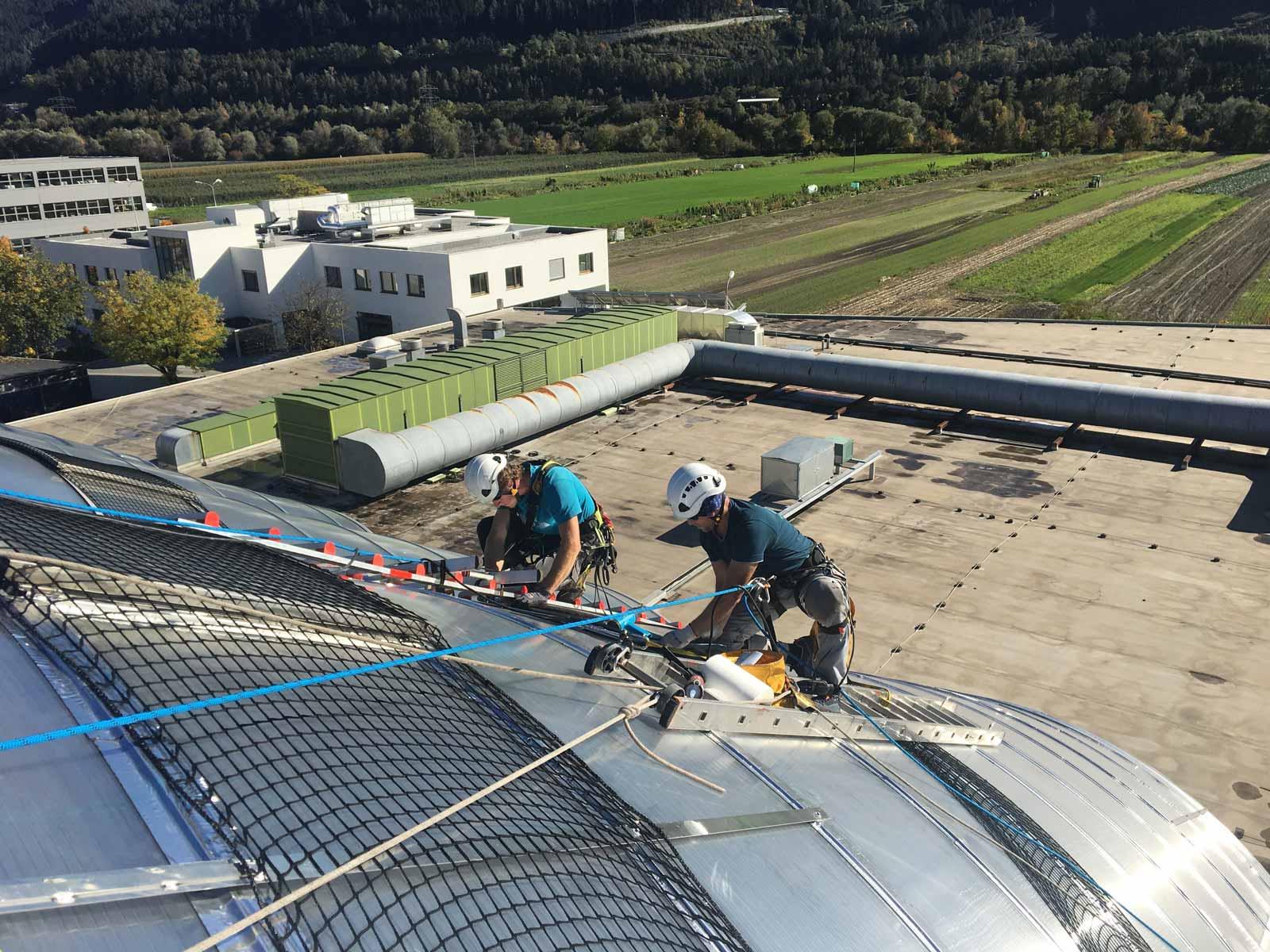 installation taubennetz dach