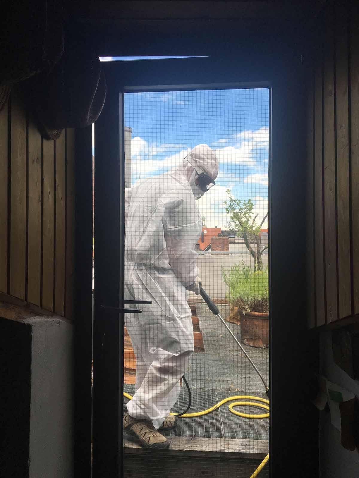 Tauben Profis Reinigung Desinfektion